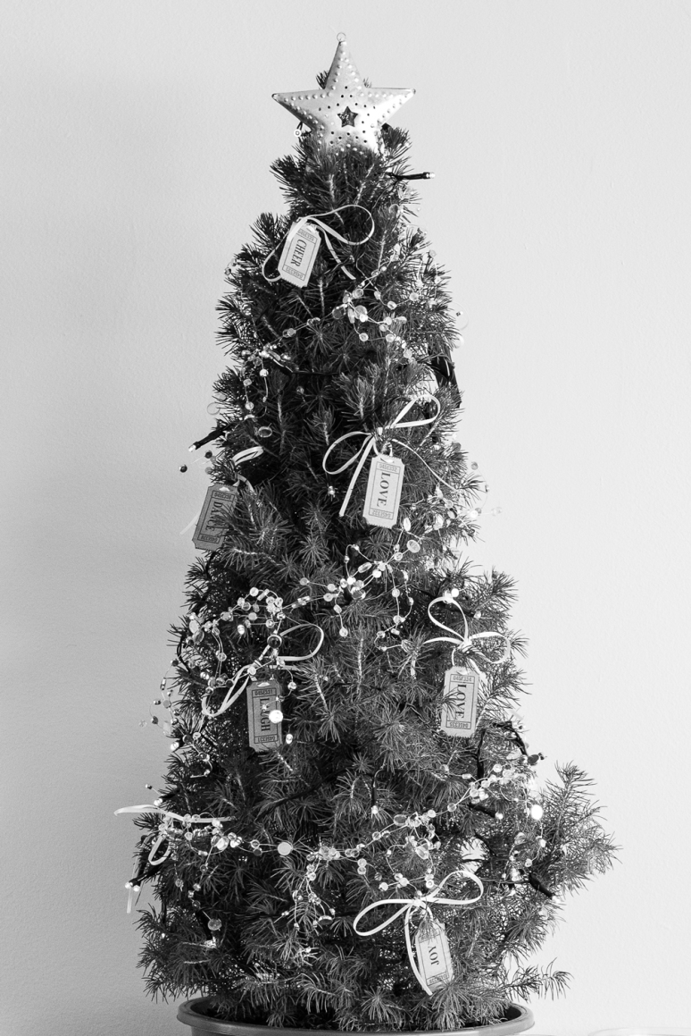 two-loves-studio-christmas-2013-(2-of-1)